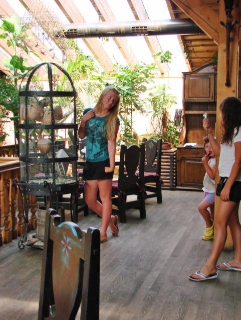 storchennest bauen neues storchennest in oldendorf nabu. Black Bedroom Furniture Sets. Home Design Ideas