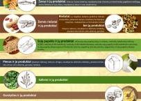 Maisto produktų alergenai